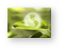 Fördermittelberatung Consedo Förderung und Zuschüsse im Bereich Energie und Umwelt