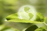 Fördermittelberatung Consedo Zuschüsse Förderung im Bereich Energie und Umwelt