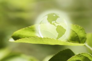 Energie und Umwelt 1
