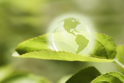 Innovative Klimaschutzprojekte