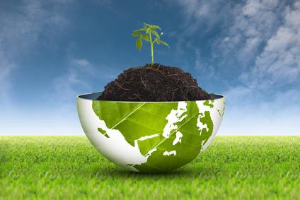 Fördermittelberatung Zuschüsse Digitale Transformation Lebensmittelwirtschaft