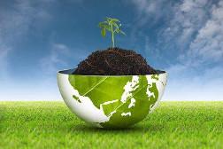 Fördermittelberatung Zuschüsse BÖLN - Verbraucherinformation ökologischer Landbau